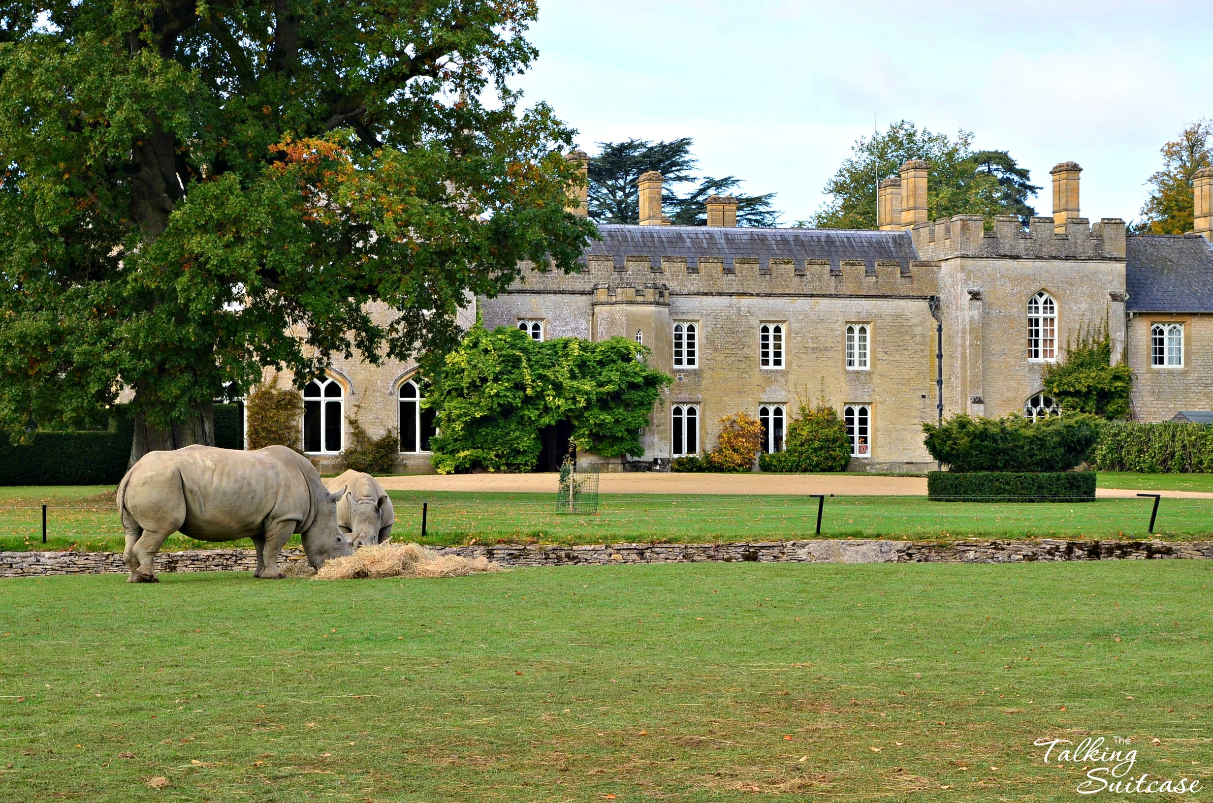 Manor House Cotswold Wildlife Park And Gardens The